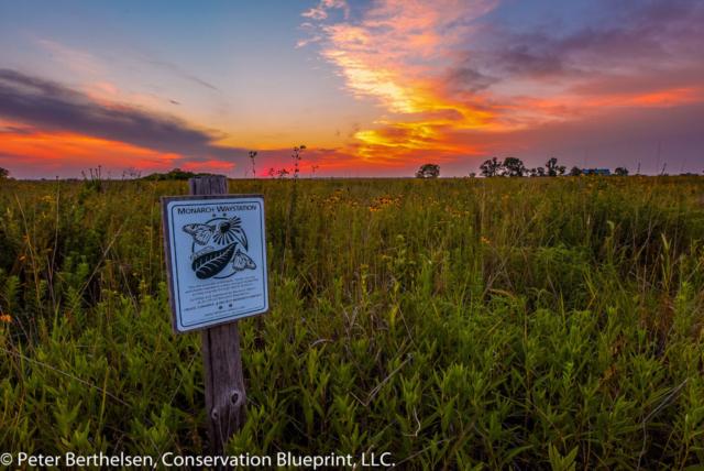 Conservation Blueprint Project Design Assistance