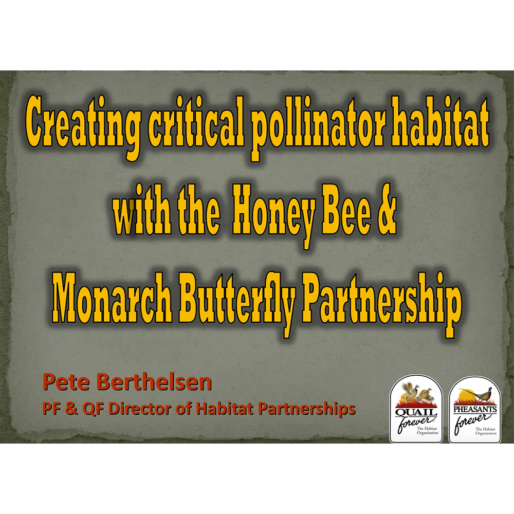 Creating Critical Pollinator Habitat with the Honey Bee & Monarch Butterfly Partnership
