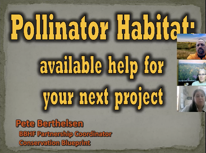 Pollinator Habitat: available help for your next project
